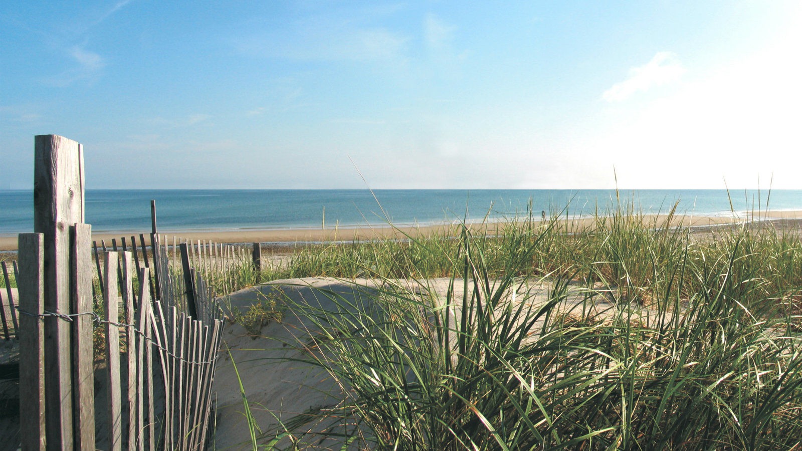 Things To Do in Eastham MA - Beaches