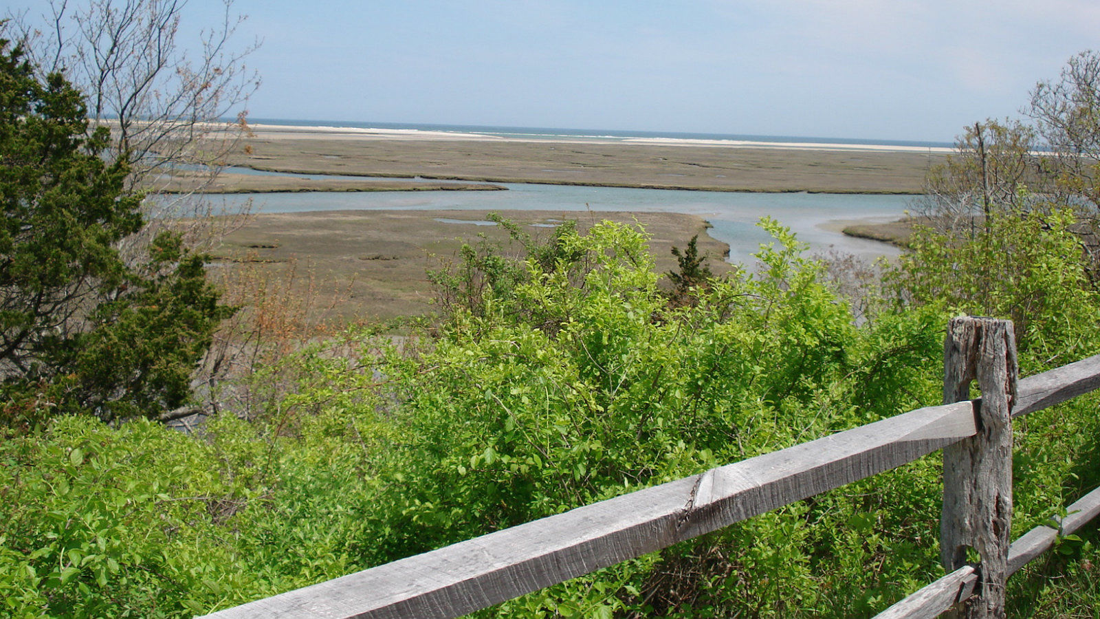 Things To Do in Eastham MA - Beach Views